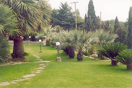 Lade per giardini esterni giardino botanico isola d elba for Giardini esterni foto